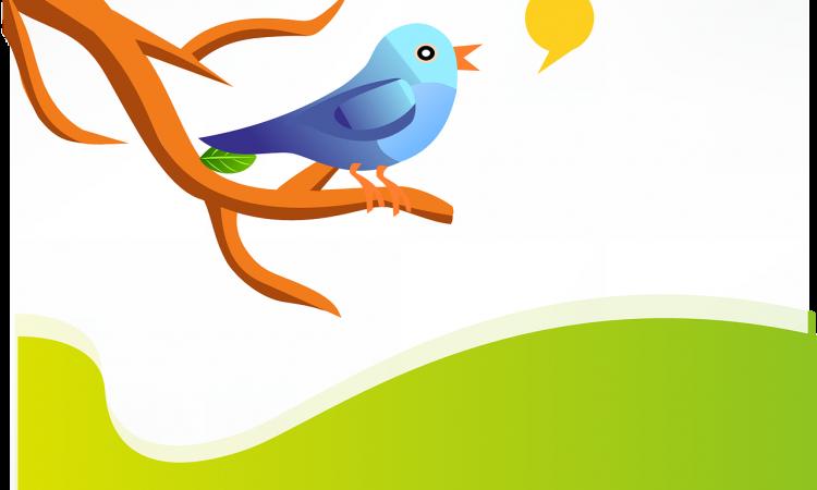 Twitter: 5 consigli per cominciare a capirlo