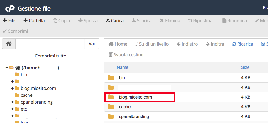 cPanel WordPress - Cartella sul server dove installare WordPress